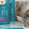 Thumbnail image for 100 Produkttester für Purina ONE Katzen Futtermittel gesucht